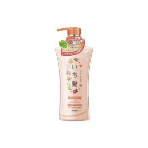 Ichikami Soft Moisture Shampoo